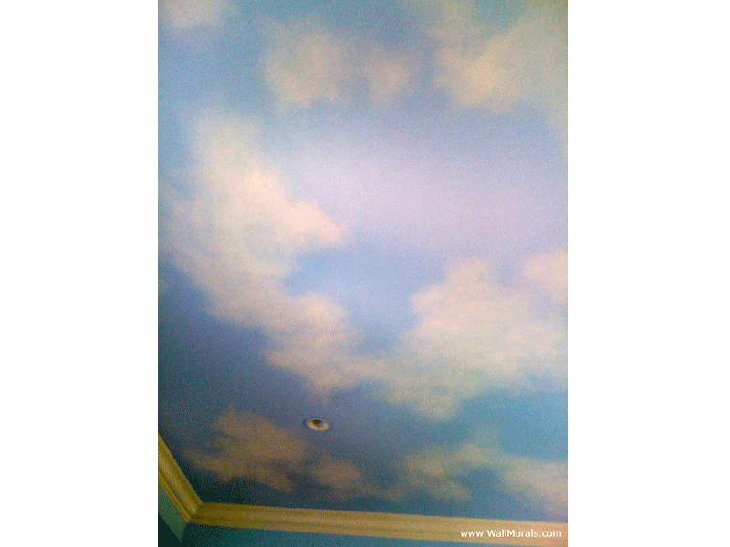 Faux Sky with Clouds on Ceiling