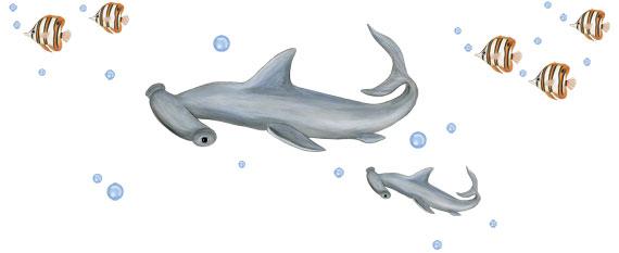 Hammerhead Shark Wall Decals - Layout Sheet