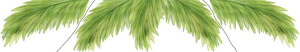 Palm Frond Wall Decals