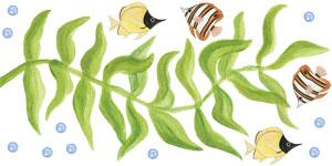 Single Seaweed - Wall Decal Sheet