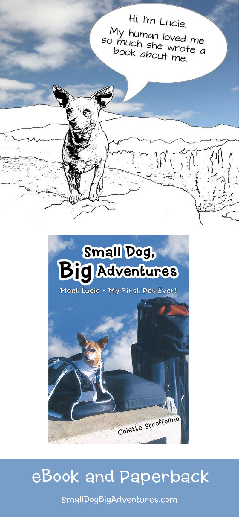Small Dog Big Adventures - Book | A True Dog Story
